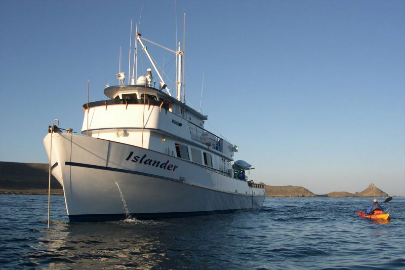 Islander Vessel used for Great White Shark Cage Dives